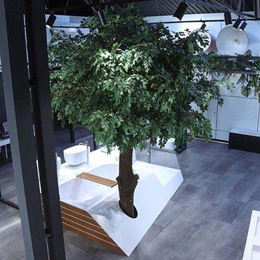drzewa-na-zamowienie
